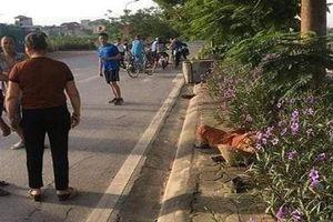 Tài xế taxi tông chết nữ lao công rồi bỏ trốn