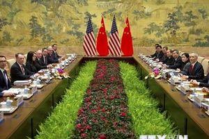 Mỹ và Trung Quốc lên kế hoạch đàm phán thương mại vào tuần tới