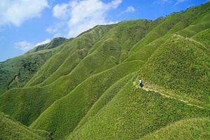 Kỳ lạ ngọn núi tuyệt đẹp thơm mùi matcha quyến rũ