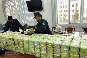 Liên tiếp bắt giữ nhiều vụ buôn bán ma túy lớn