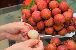 Thực hư quan niệm trái cây ăn vào gây nóng trong người