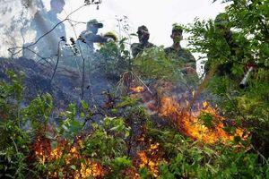 Đà Nẵng: 3 giờ chiến đấu với 'giặc lửa', khống chế thành công đám cháy rừng tự nhiên