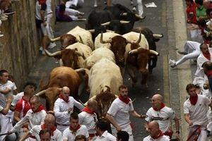 Kinh hoàng cảnh bò tót rượt đuổi người dự lễ hội San Fermin