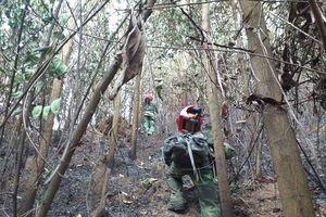 Rừng thông ở Đà Nẵng bất ngờ bốc cháy ngùn ngụt, hơn 100 chiến sĩ tham gia dập lửa