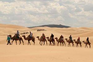 Nội Mông kỳ thú: thảo nguyên hóa sa mạc, khu vui chơi trong gió cát