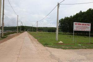 Quảng Ninh yêu cầu dừng đấu giá đất nền vì 'sốt ảo'