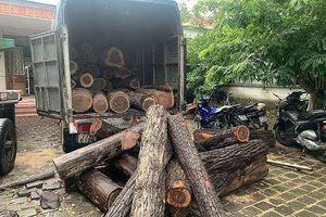 Tạm đình chỉ hai cán bộ trong vụ xe ô tô chở gỗ lậu qua chốt kiểm lâm không bị kiểm tra