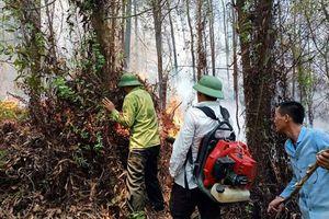 Hà Tĩnh: Rừng thông tại Hương Sơn lại bốc cháy dữ dội