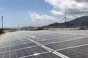Hướng đến mục tiêu 1.000 MW điện mặt trời mái nhà