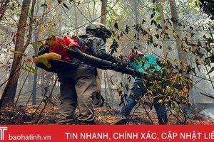 Lại cháy rừng thông trên 40 năm tuổi ở huyện miền núi Hà Tĩnh