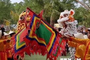Festival văn hóa Việt Nam lần thứ nhất tại Lyon