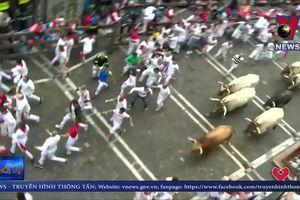 Nhiều người bị thương trong lễ hội bò tót Tây Ban Nha