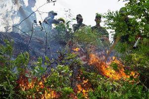 Đà Nẵng: Điều động gần 200 chiến sĩ chữa cháy tại khu rừng tràm