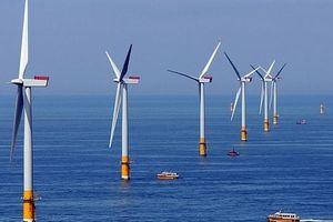 Kỳ vọng đột phá cho năng lượng tái tạo Việt Nam
