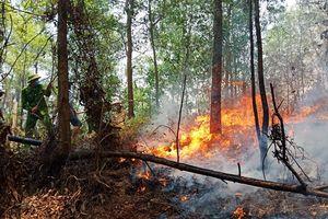 Rừng Hà Tĩnh lại cháy lớn, hàng trăm người nỗ lực dập lửa