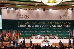 Châu Phi thúc đẩy hoạt động Khu vực thương mại tự do lớn nhất thế giới