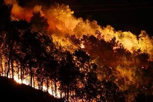 Cháy rừng Hà Tĩnh bùng phát trong đêm, hàng trăm người ứng cứu