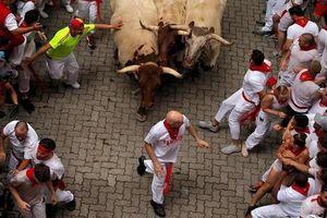 Thót tim xem lễ hội bò tót San Fermin ở Tây Ban Nha