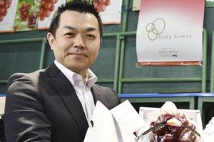 Choáng váng chùm nho đỏ của Nhật giá kỷ lục gần 256 triệu có tên là Hồng ngọc La Mã
