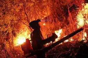 Rừng ở Hà Tĩnh lại cháy đỏ rực, hàng trăm người xuyên đêm vật lộn với 'giặc lửa'