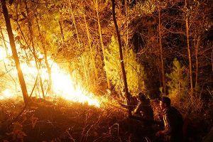 Lửa lại bùng phát, hàng trăm người trắng đêm cứu rừng ở Hương Sơn