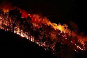 Rừng ở Hà Tĩnh lại cháy đỏ rực trong đêm, dân tất tả ôm đồ sơ tán
