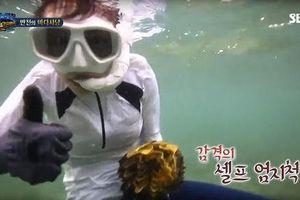 Thái Lan quyết xử vụ sao Hàn Quốc ăn sò khổng lồ 50 năm tuổi quý hiếm