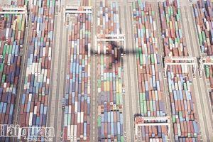 Căng thẳng Nhật-Hàn có nguy cơ gây đứt gãy chuỗi cung ứng toàn cầu