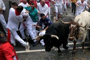 Lễ hội rượt bò San Fermin tại Tây Ban Nha khiến nhiều du khách bị thương