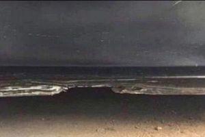 Bức ảnh 'Cảnh biển đêm' đánh lừa đôi mắt hàng ngàn người trên mạng xã hội