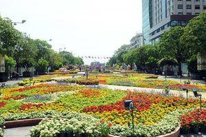 Tết 2020, người dân TP.HCM được ngắm Đường Hoa Nguyễn Huệ trong 7 ngày