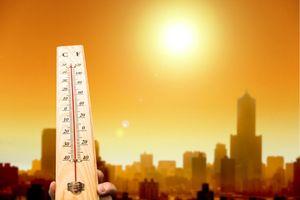 Thời tiết nắng nóng cảnh báo nguy cơ tử vong do sốc nhiệt