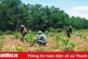Hiệu quả công tác phối hợp giữa lực lượng vũ trang với MTTQ các đoàn thể trong quản lý bảo vệ rừng ở huyện Như Xuân