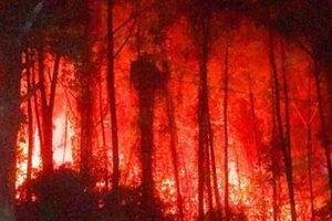 Cháy rừng thông gần Lăng vua Khải Định