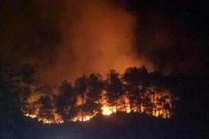 Hơn 500 người thức trắng đêm dập tắt đám cháy rừng trên núi Nầm, Hà Tĩnh