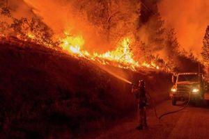Những vụ cháy rừng khủng kiếp trên thế giới