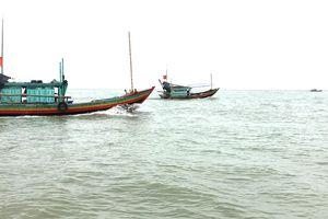 Kiên Giang: Ngư dân khai thác thủy sản trái phép vẫn gia tăng