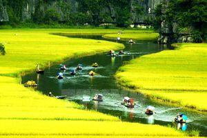 Lượng khách quốc tế đến Việt Nam: Có thể về đích trước 1 năm…