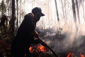 5 giờ đồng hồ, lửa lớn thiêu cháy gần 20ha rừng trồng