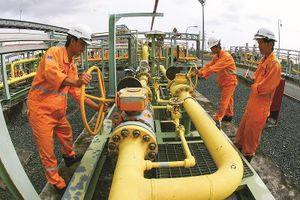 Tập đoàn Dầu khí Việt Nam đã cơ bản hoàn thành tốt các chỉ tiêu 6 tháng đầu năm
