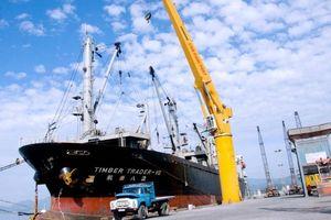 Lợi nhuận cảng Cam Ranh tiếp tục tăng ấn tượng