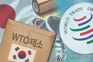 Tranh chấp thương mại Nhật - Hàn 'nóng lên' tại WTO