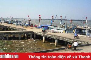 Chỉ sử dụng được 70m trong tổng số 230m cầu tàu tại Cảng cá Lạch Hới