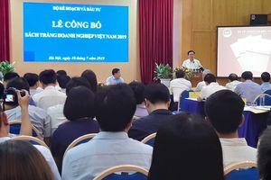 Lần đầu công bố Sách trắng Doanh nghiệp Việt Nam