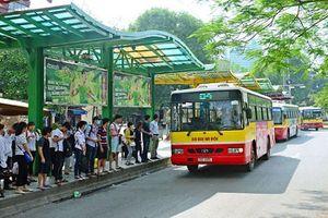 Xe buýt Hà Nội sẽ 'chết dần' nếu không được 'vực dậy'