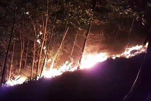 Quảng Nam dập tắt ba vụ cháy rừng ngay trong đêm