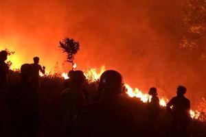 Khởi tố một phụ nữ đốt cỏ gây cháy rừng
