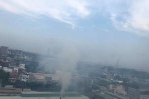 Nhà máy giấy gây ô nhiễm nghiêm trọng khu dân cư