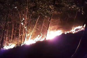 Quảng Nam: Hàng trăm người trắng đêm dập lửa, cứu rừng