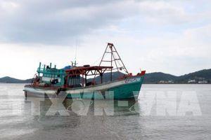 Sóng to đánh chìm tàu chở 15.000 lít dầu, 4 thuyền viên được cứu vớt